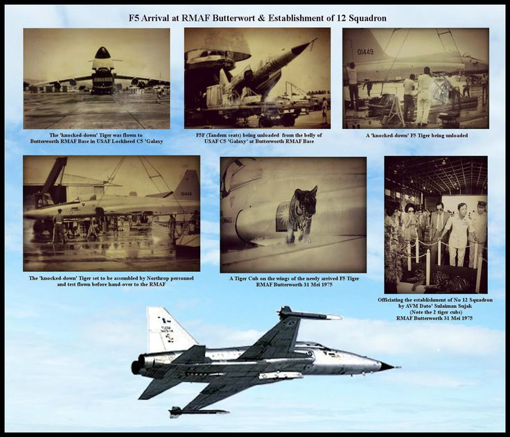 Rare View of 'air-freighted' F-5E in standard Silver paint scheme) on delivery to Royal Malaysian Air Force (RMAF) Base Butterworth in 1975. The 'knocked-down' Tiger was flown to Butterworth in USAF C-5A 68-0214. The F-5s was assembled by Northrop personnel, and test flown before hand-over to the RMAF - March 18, 1975 Officiating the stablishment of No 12 Skuadron by AVM Dato' Sulaiman Sujak (Note the 2 tiger cubs)- Butterworth 31 Mei 1975