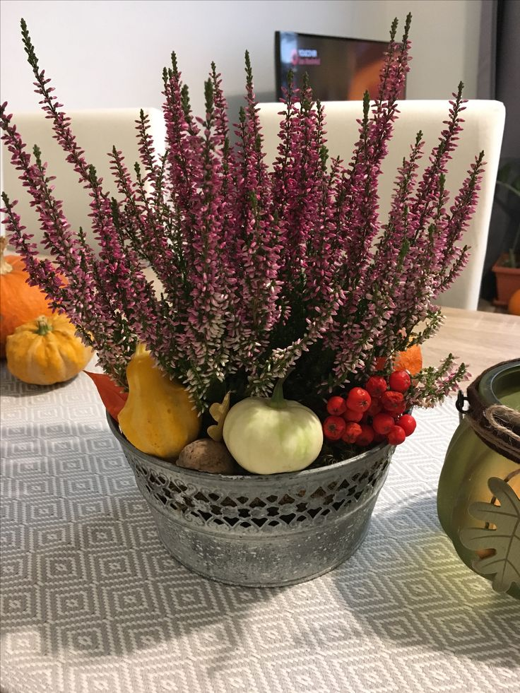 Fall decorating with pumpkins and heather
