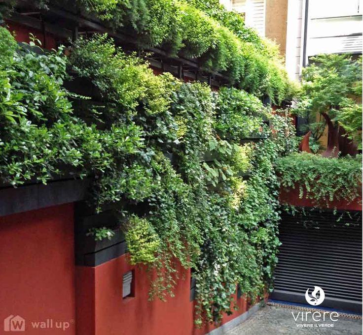 17 migliori idee su Giardini Di Casa su Pinterest  Piante, Giardinaggio e Progettazione di giardini