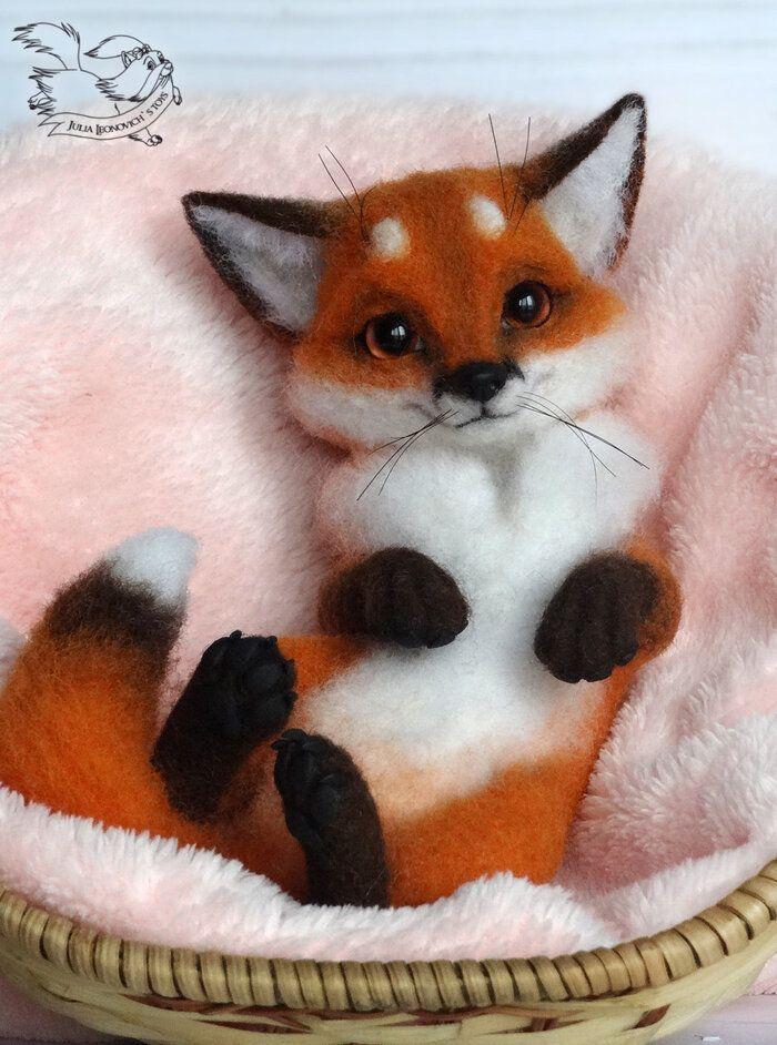 фото лисичек животных