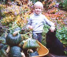 10 crops to plant with children