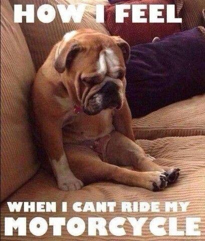 Wie fühlst du dich, wenn du dein Mopped nicht fahren kannst?