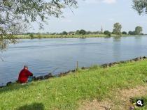 NS-wandeling Land van Ravenstein, De uiterwaarden van de Maas