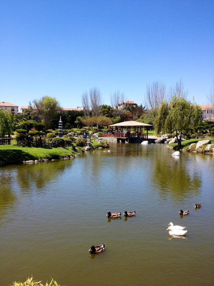 Jardín del Corazón / La Serena / Chile