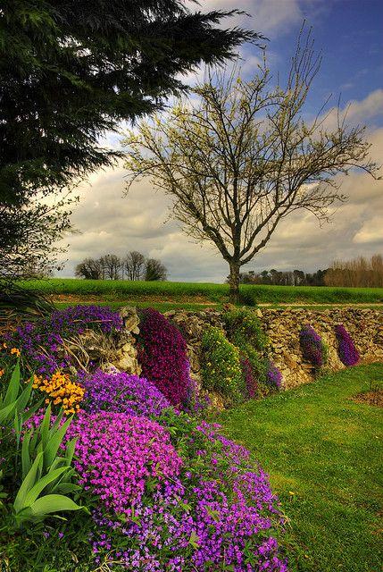 Jardim na primavera.