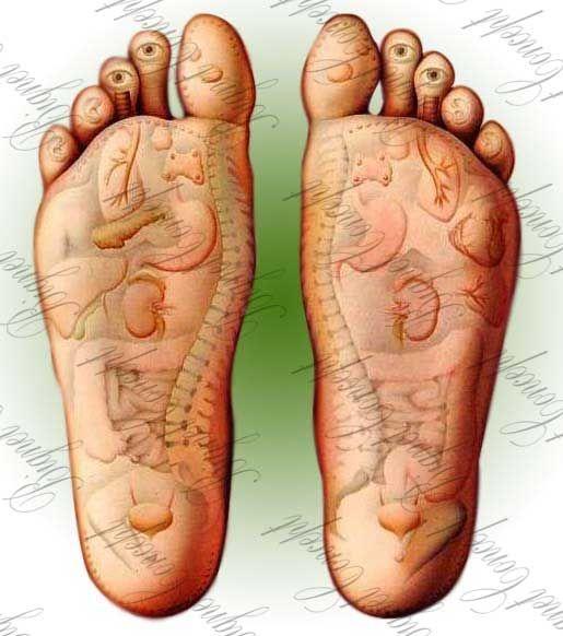 Ayaklar vücudumuzun aynasıdır lafından yola çıkılarak bilinenve uzak doğu tıbbının değişilmez bir parçasını yaratan bu masajda ayak zemininde tespit edileceknoktalara bası uygulanmaktadır. Ayakta her bir noktabedende belli uzuv ve dokuları temsil eder. Refleksoloji, bir tür balans masajıdır ve... Refleksoloji masajı, Ayak masajı, Food masajı