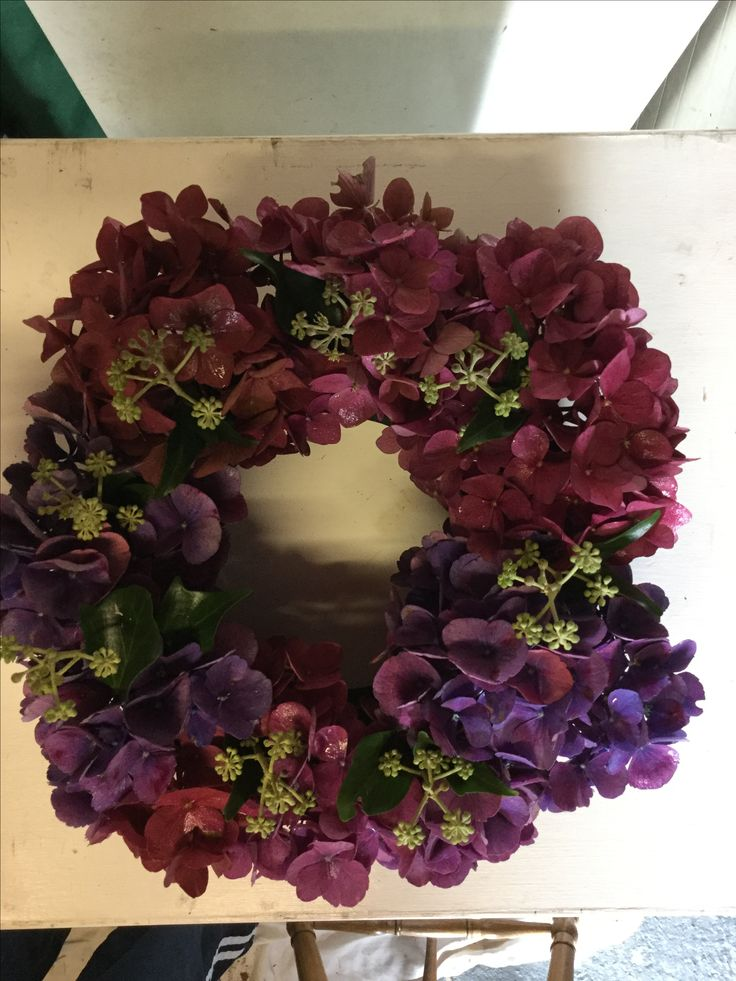 Hydrangea welcome ring