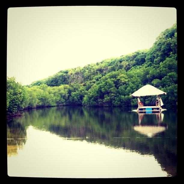 FIshing #fish #lake #water #sumilon #cebu #philippines #shack #nipa #boat