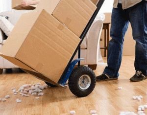 Make Your Relocation easier with our professional Service!