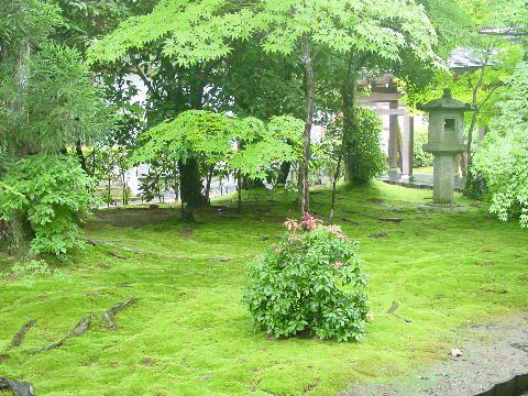 Jardín de yoan -yi templo