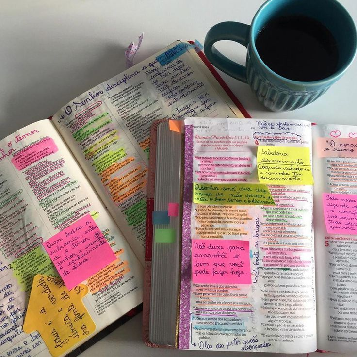 bible college,bible study,bible learning,bible knowledge