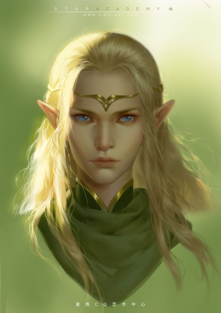 Elves Fantasy Young Woman 1