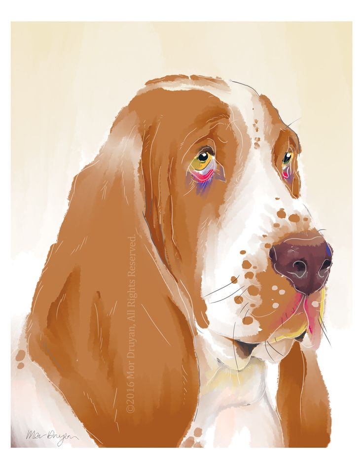"Excited to share the latest addition to my #etsy shop: A Gentle Basset Hound Colorful Art Print Of Original Painting-8x10"", 11x14"". Visit my shop for more pet related wall decor! #BassetHoundart #BassetPrint #BassetHound #Nurserydecor #DogPortrait #BassetHoundGifts #DogWallDecor #beige #rainbow #dogdrawing #artprint http://etsy.me/2py89ze"