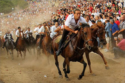 """L'Ardia di San Costantino.  Sardinia, Italy.  Today marks the third day of the annual horse races which take place in the Sardinian town of Sedilo.  The festival commemorates Constantine's victory over Maxentius in 312.  (Photo by Megan Cytron on Open Places).  If you ever take a trip to Sardinia, be sure to try Sebadas, their regional specialty dessert pastry!  We've featured a Sebada recipe on the D'Angelo Italian Market Facebook Page, so if you're feeling ambitious, it's an """"open class!"""""""