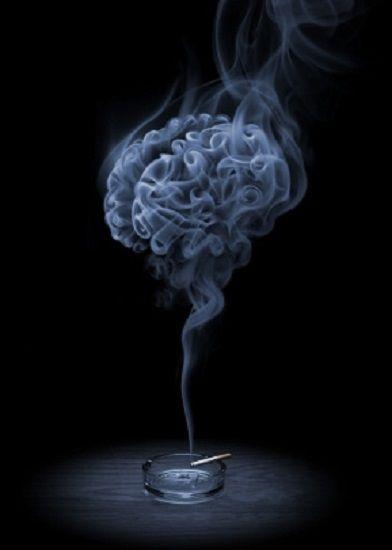Brain circuit that supports smoking cessation identified.