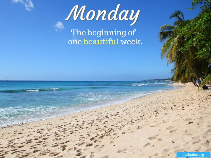 Monday motivation with warm wishes from Barbados.