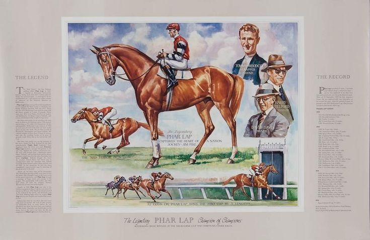TAA posters for 1982 Melbourne Cup & 1983 Melbourne Cup