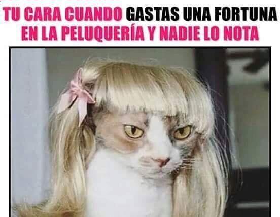 Imagenes de Humor #memes #chistes #chistesmalos #imagenesgraciosas #humor www.megamemeces.c... ➢➢ http://www.diverint.com/humor-grafico-espana-caras-graciosas-bebes