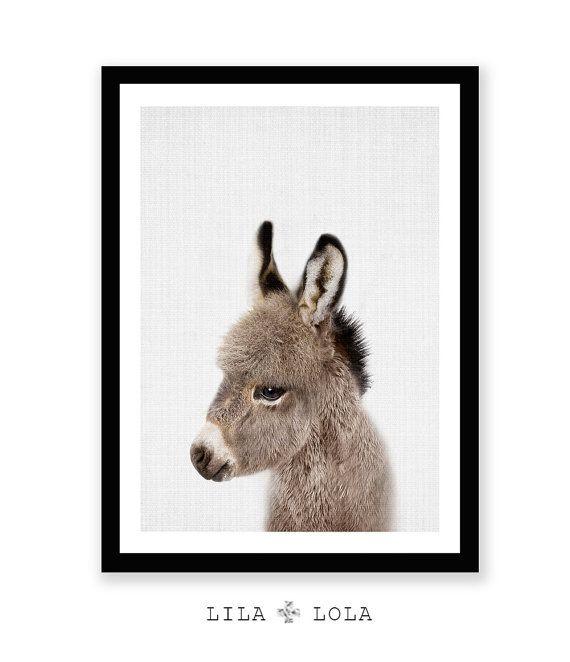 Impresión de burro bebé guardería Animal pared arte por LILAxLOLA