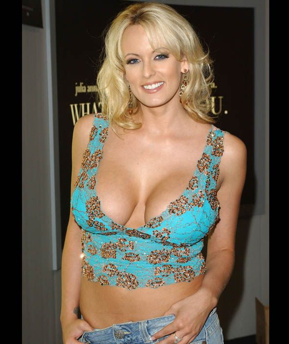 American adult entertainment star Stormy Daniels and Donald Trump were rumoured to have hooked up in 2008 [WireImage]