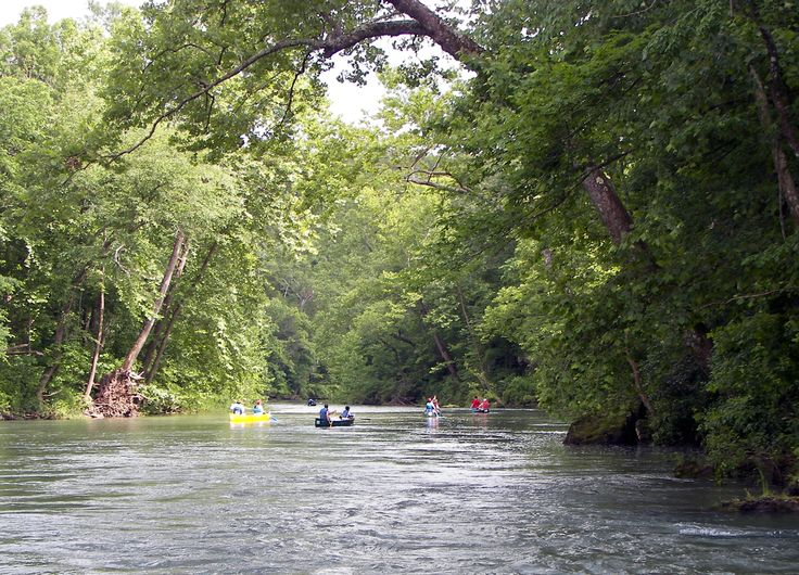 Floating the Current River in Missouri: Favorite Places, Beautiful Places, Rivers T-Shirt, Places I D, Beautiful Current, Rivers Fun, Current Rivers, Awesome Places, Mothers Natural