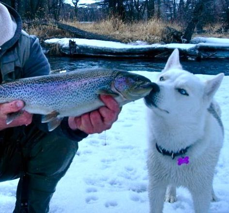 23 best history of crested butte images on pinterest for Crested butte fishing