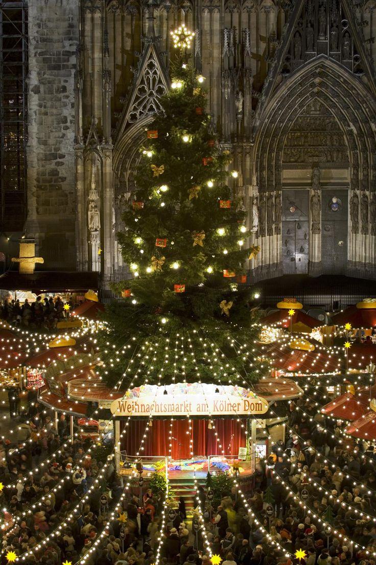 Weihnachtsbaum am Kölner Dom: