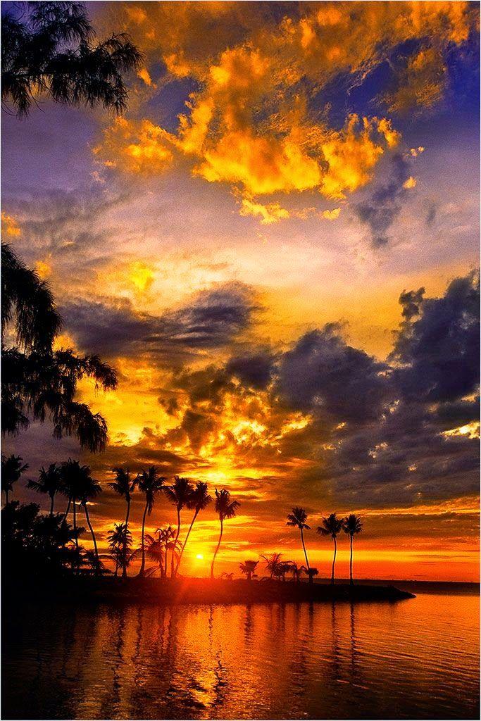 Silver Palm Sunset - Islamorada, Florida