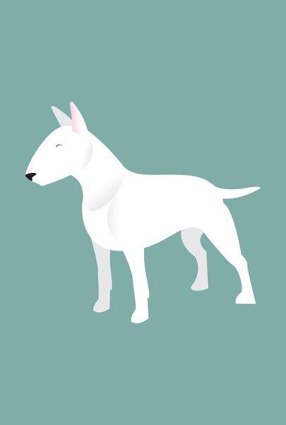 mini bull terrier Art Print