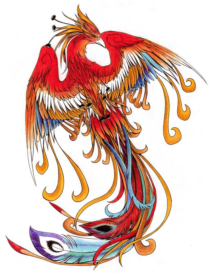 132 best images about phoenix tattoo inspiration on for Huma bird tattoo