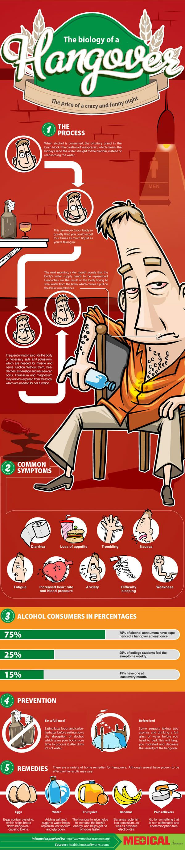 If it was up to us, everyone would drink responsibly and there would be no hangovers to be endured. Unfortunately it isn't up to us and people tend to get a little out of control. To help you after you've made poor decisions, here's a look at the biology of a hangover, and how to stop the room from spinning. Brought to you by medicalinsurance.org.