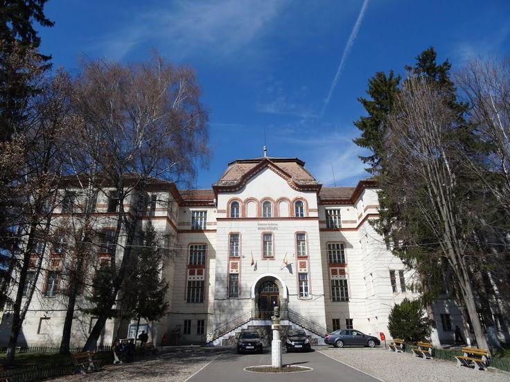 Fosta Școală Normală de Fete (1906-1908), azi Colegiul Naţional Mihai Viteazul, strada Kós Károly 22, Sfântu Gheorghe
