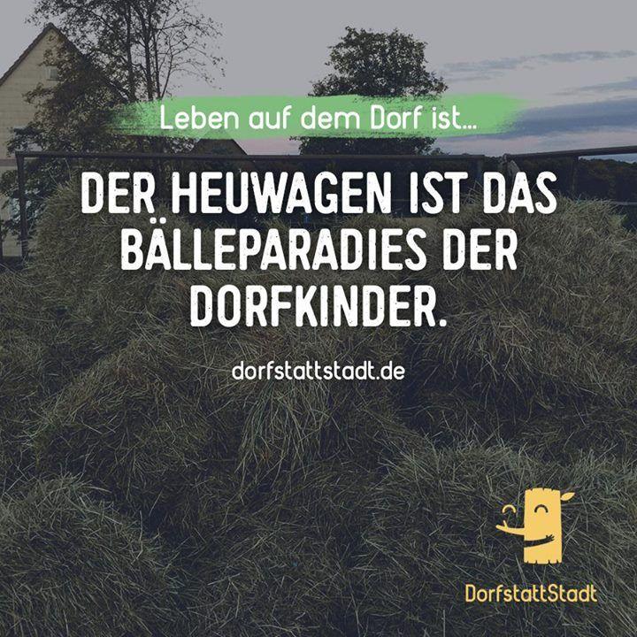 - http://ift.tt/2bxpvWl - #dorfkindmoment #dorfstattstadt