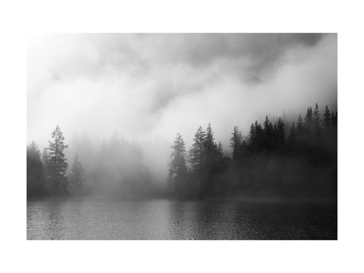 Dark Fog Wall Art Prints by Jennifer Morrow   Minted