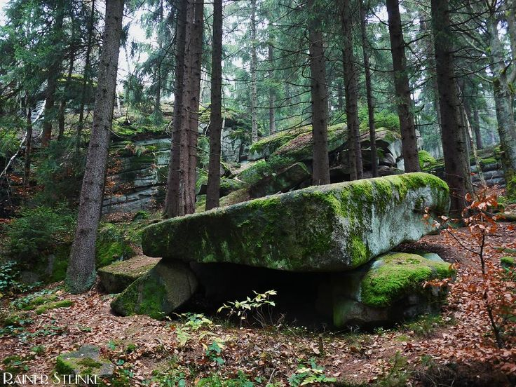 Dolmen am Bärenfels - Oberpfälzer Wald.  Den Dolmen am Bärenfels findet man unterhalb der Burgruine Schellenberg auf dem Schellenberg im Oberpfälzer Wald. Wie so oft gibt es zu diesem Monument wenig Informationen lediglich eine Infotafel auf dem Weg zum Dolmen beschreibt allgemein das Thema Dolmen zum Dolmen am Bärenfels selbst sind keine Informationen darauf vermerkt.  Aufmerksam wurde ich durch einen Eintrag bei OpenStreetMap dort ist die Stelle als Ausgrabungsstätte - Dolmen gelistet…