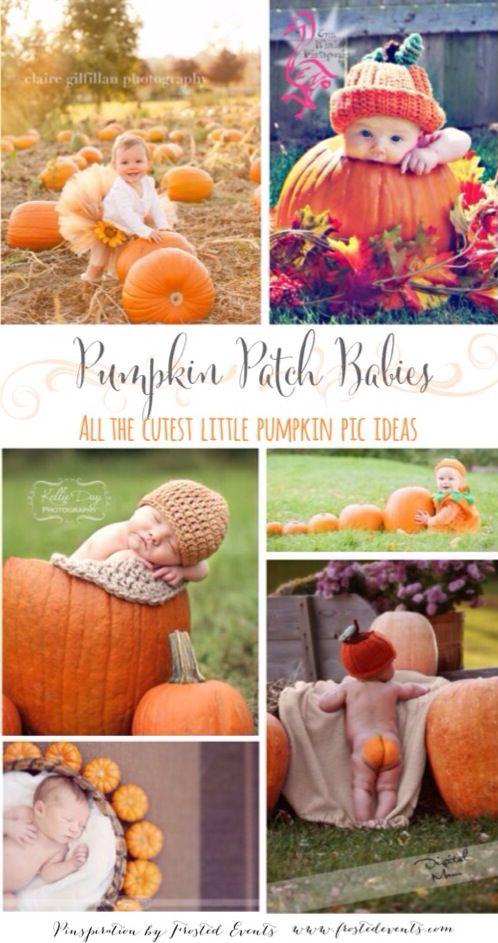 Pumpkin Patch Babies!  The cutest most adorable ideas for taking pics of your little ones with pumpkins. #bestofpinterest #pumpkin