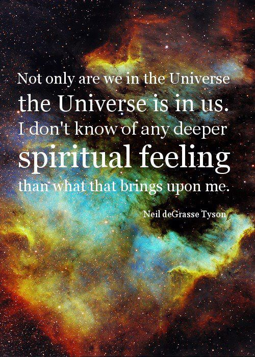 """Neil deGrasse Tyson: """"Not only are we in the Universe, the Universe is in us. I don't know of any deeper spiritual feeling than what that brings upon me."""""""