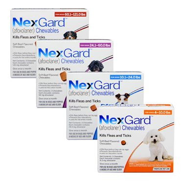NexGard Chewables for Dogs are the first and only soft beef-flavored chew approved to kill both fleas and the following species of ticks for a full month: the American Dog tick, Lone Star tick and Black-legged Deer tick, in dogs and puppies  4 pounds or greater and 8 weeks of age and older.