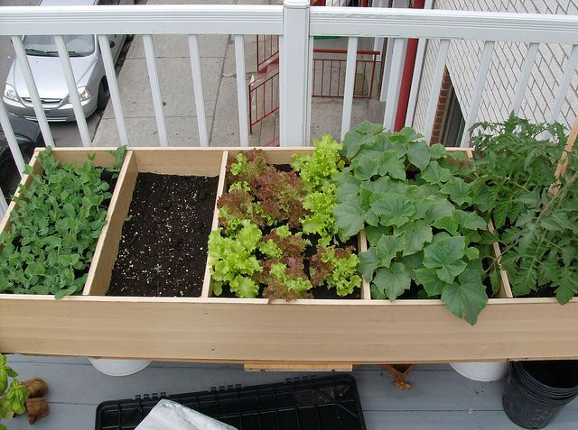 Using an old bookshelf as a planter