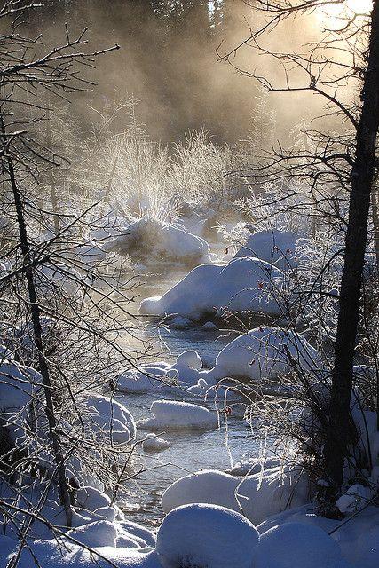 *The Mists of McIntyre Marsh (by Hank Moorlag)