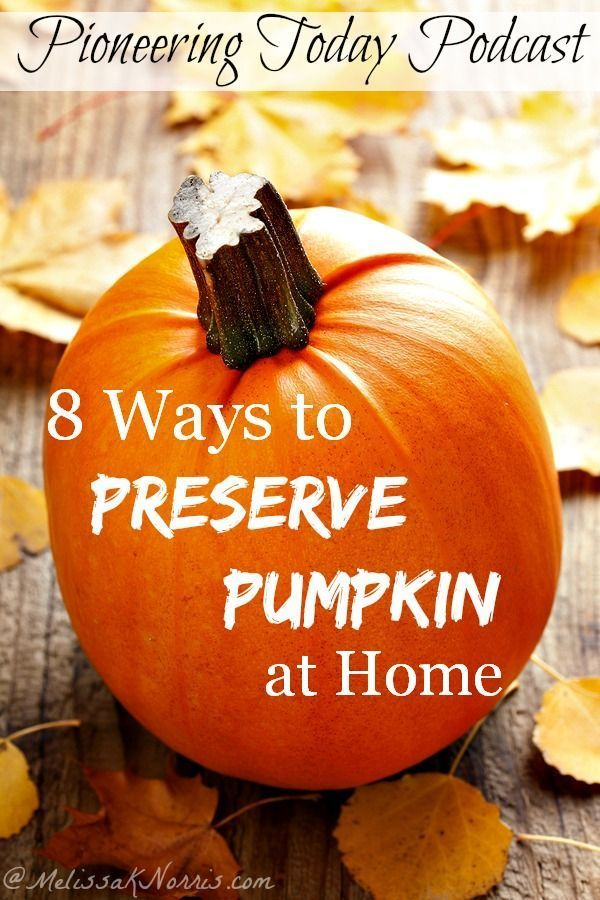 Fabulous ways to preserve pumpkin at home to use all year long. Super important to know which are true safe ways to can pumpkin. If you're a true pumpkin fan, you'll want to snag this now to put up your pumpkin while it's in season for year round use.