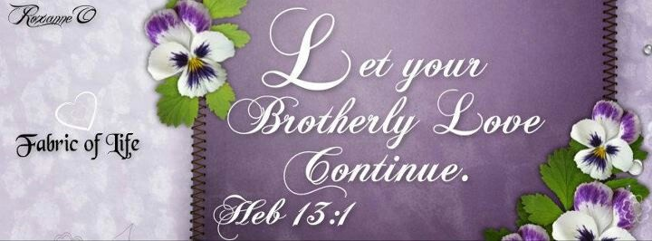 """""""Let your brotherly love continue"""". Hebrews 13:4"""