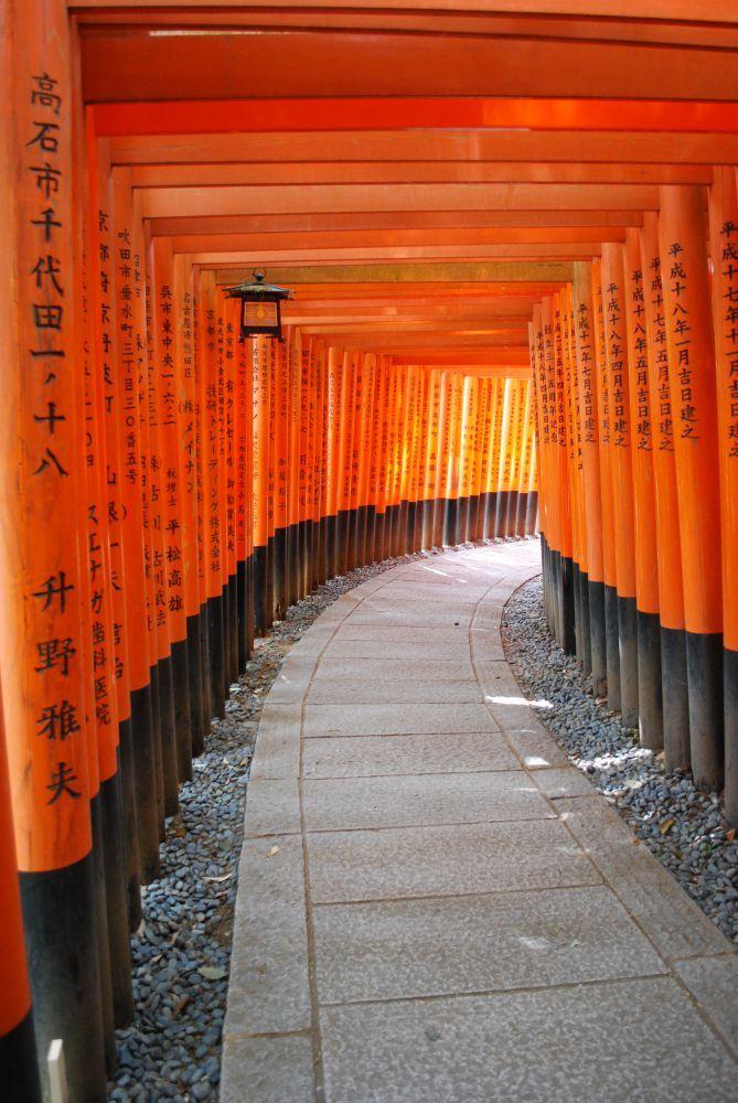 voyage japon avec 2 enfants (9)