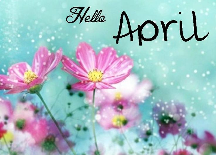 1000+ images about hello months on Pinterest  Hello august, Timeline covers ...