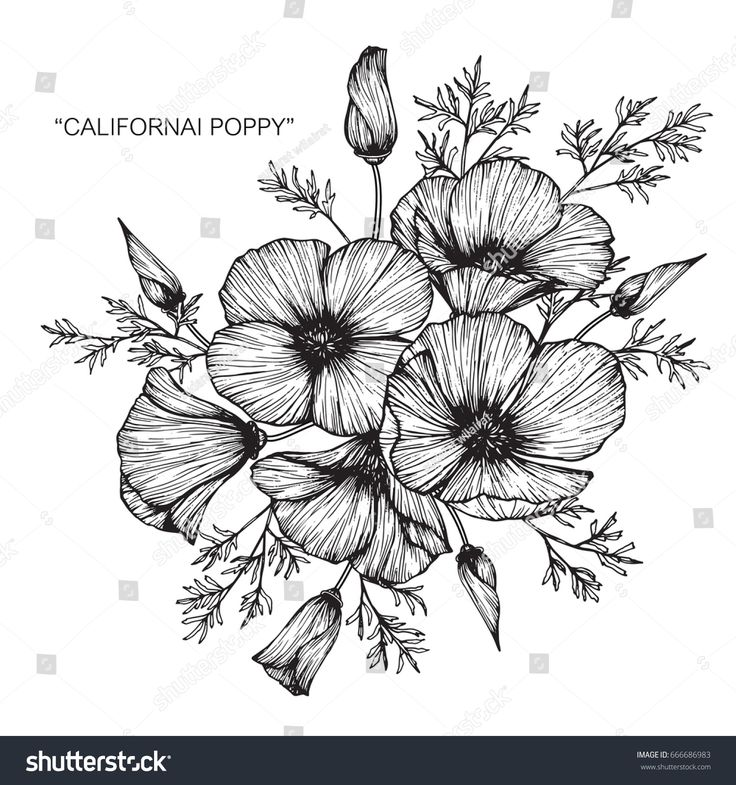 how to draw flower boquet