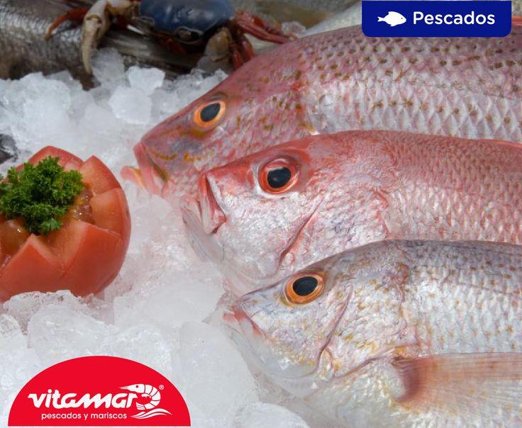#TipsVitamar Para descongelar el pescado de forma correcta, hay que sumergirlo en agua fría con 3 ó 4 cucharadas de sal, durante 1 hora, con el fin de que el pescado conserve todo su sabor. También se puede descongelar sumergido en leche.