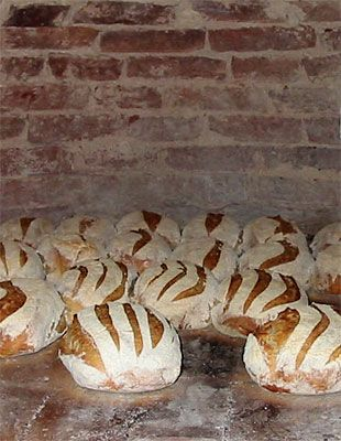 Gorgeous Sourdough! Freeform sourdough bread baking in a wood fired oven built by John Downes