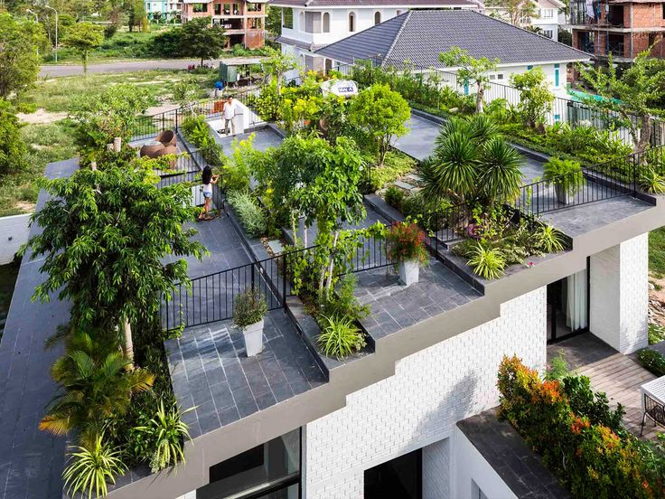No room for garden on floor, instead use of roof space for garden. Geometric form of sloped roof explored and enhanced.