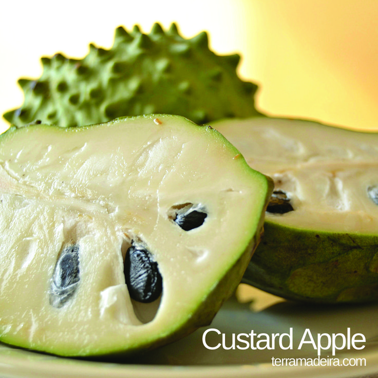Custard apple is a fruit with a white, creamy and juicy pulp, delicate flavour and strong perfume.   #terramadeira  #custardapple