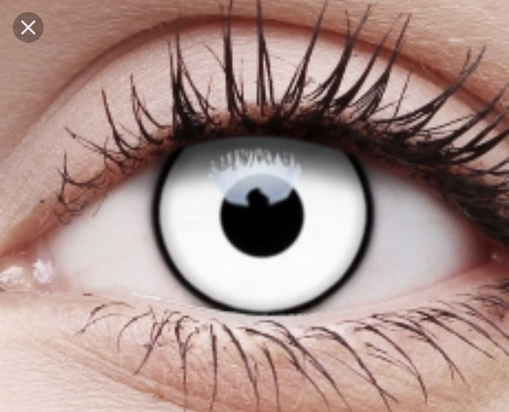 White out contacts ( only 1 left)